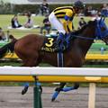 Photos: イーグルフェザー  返し馬(19/10/06・グリーンチャンネルカップ)