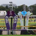 Photos: 東京競馬場 ゴール板(19/10/06)