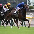 Photos: アフリカンゴールド レース(19/10/06・六社ステークス)