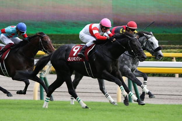 ダノンキングリー レース(19/10/06・第70回 毎日王冠)