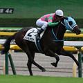 Photos: バトルカグヤ レース(19/10/06・新馬戦)