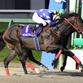 Photos: ヤマショウブラック レース(19/09/16・第51回 不来方賞)