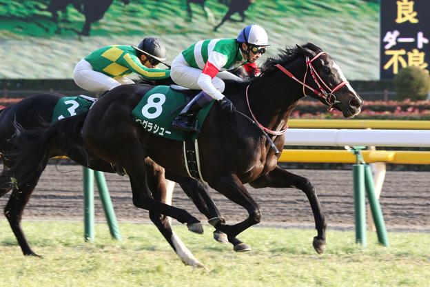 リスグラシュー レース(18/02/04・第68回 東京新聞杯)