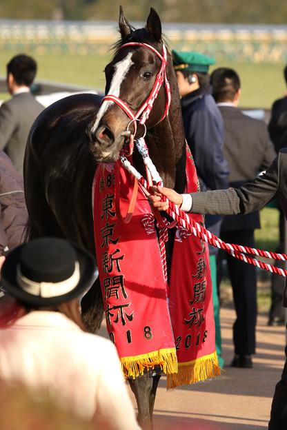 リスグラシュー_1(18/02/04・第68回 東京新聞杯)