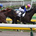 Photos: ピオノノ レース(19/10/14・2R)