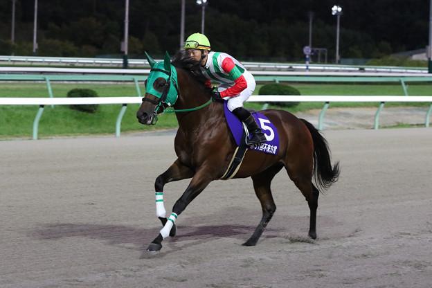 パンプキンズ 返し馬(19/09/16・第51回 不来方賞)