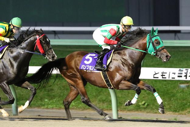 パンプキンズ レース(19/09/16・第51回 不来方賞)