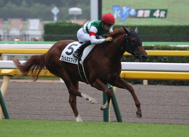 フェルミスフィア レース(19/10/14・新馬戦)