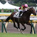 Photos: フィリオアレグロ レース(19/10/19・新馬戦)