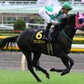 Photos: フジノロケット 返し馬(19/10/19・アイビーステークス)
