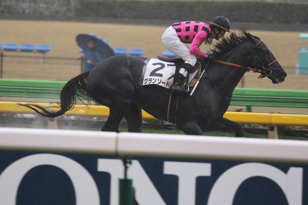 グランソード レース(19/11/23・4R)