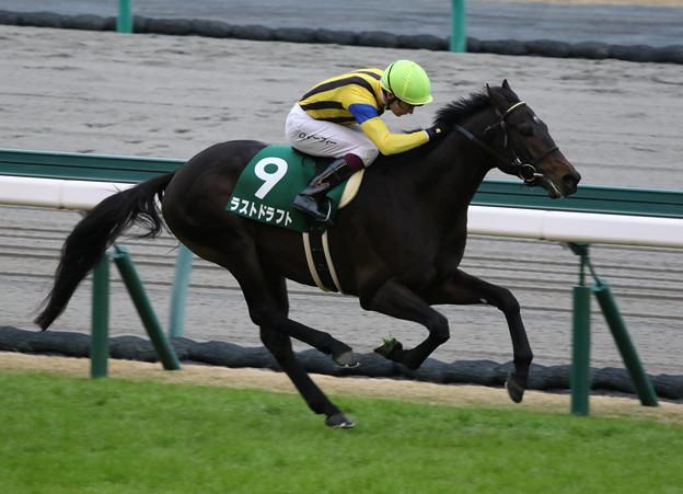 ラストドラフト レース_1(19/12/07・第55回 中日新聞杯)