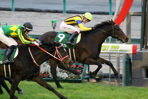 ラストドラフト レース_2(19/12/07・第55回 中日新聞杯)
