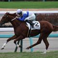 Photos: ロードオマージュ レース(19/12/21・3R)