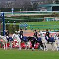 Photos: 第142回 中山大障害 誘導馬(19/12/21)