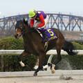 Photos: ニュータウンガール レース(19/12/30・第23回 ライデンリーダー記念)
