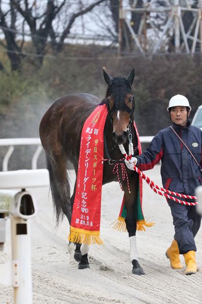 ニュータウンガール_1(19/12/30・第23回 ライデンリーダー記念)