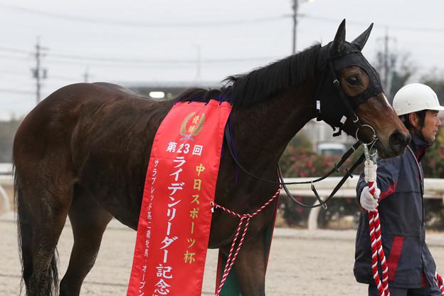 Photos: ニュータウンガール_2(19/12/30・第23回 ライデンリーダー記念)