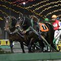 Photos: ヤマトテンリュウ レース(19/11/02・9R)