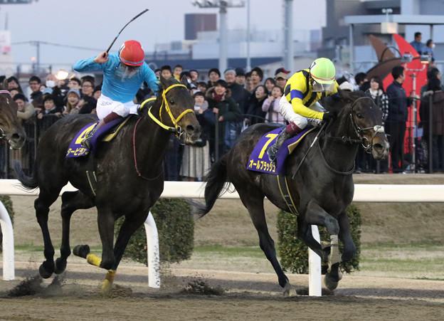 第56回 報知オールスターカップ_1(20/01/03)