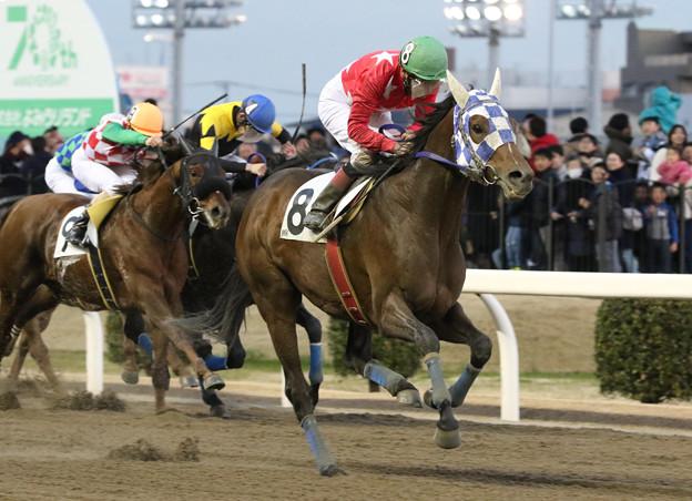 マイネルバサラ レース(20/01/02・大師オープン)