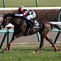 Photos: シオミチクレバ レース(20/01/11・朱竹賞)