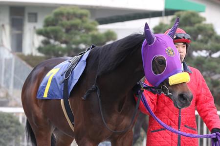 コスモバレット パドック(20/01/17・JA兵庫西アグリドリーム賞)