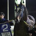 Photos: ゴールデンフジ 口取り(19/11/03・ミントスポット北見10周年記念)