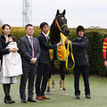 Photos: ユイノシンドバッド 口取り(20/01/12・4R)