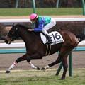 Photos: リヴァージュ レース(20/01/12・新馬戦)