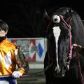 Photos: ウンカイタイショウ 口取り(19/02/03・9R)