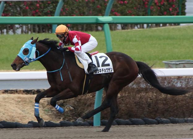 コウキチョウサン レース(20/01/26・4R)