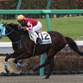 Photos: コウキチョウサン レース(20/01/26・4R)
