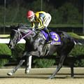 Photos: ミスカゴシマ レース_1(20/01/19・山口シネマ杯 第61回 花吹雪賞)