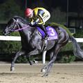 Photos: ミスカゴシマ レース_2(20/01/19・山口シネマ杯 第61回 花吹雪賞)