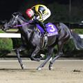 Photos: ミスカゴシマ レース_3(20/01/19・山口シネマ杯 第61回 花吹雪賞)