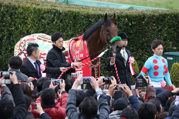 第61回 アメリカジョッキークラブカップ 口取り(20/01/26)