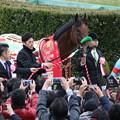 Photos: 第61回 アメリカジョッキークラブカップ 口取り(20/01/26)