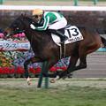 Photos: クラヴィスオレア レース(20/01/11・12R)