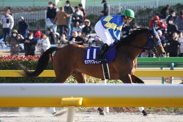 モジアナフレイバー 返し馬(20/02/23・第37回 フェブラリーステークス)