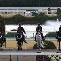 Photos: 京都競馬場 誘導馬_6(19/02/10)