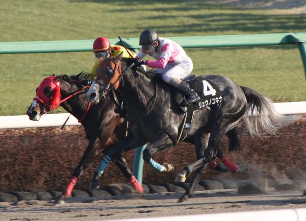 リュウノユキナ レース(20/01/13・初春ステークス)