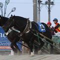 Photos: ライデンロック レース(12/08/26・8R)