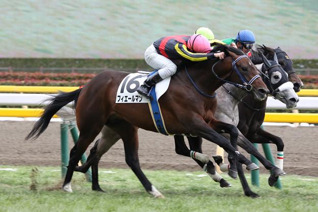 フィエールマン レース(18/01/28・新馬戦)