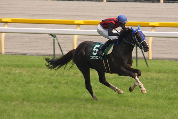 Photos: エイシンボストン レース(09/06/13・第11回 東京ジャンプステークス)