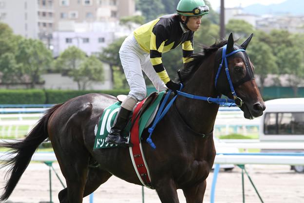 ドングラシアス 返し馬(11/07/30・第13回 小倉サマージャンプ)
