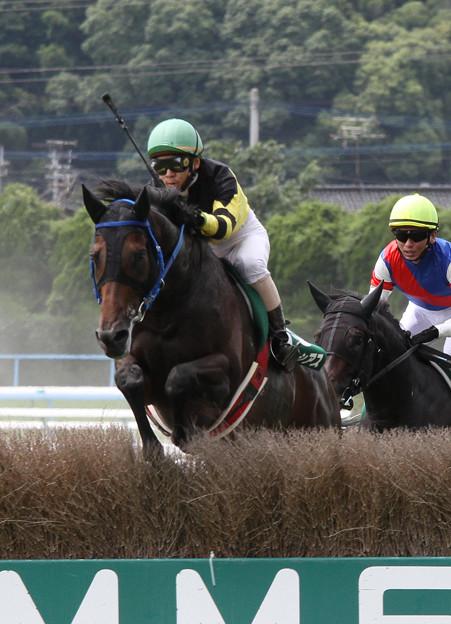 ドングラシアス レース(11/07/30・第13回 小倉サマージャンプ)