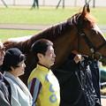 Photos: ブレイクザボーダー 口取り(20/02/23・3R)