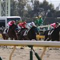 リュードマン レース_1(20/02/22・2R)