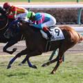 Photos: フォースオブウィル レース(20/01/13・新馬戦)